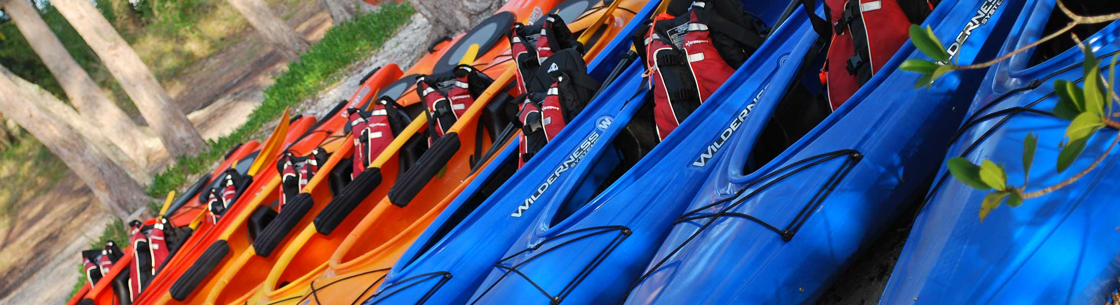 Book Your Kayak Tour