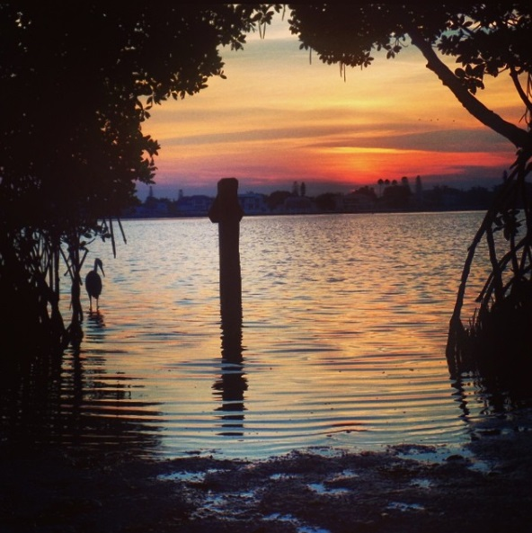 Sarasota's Best Kept Secrets